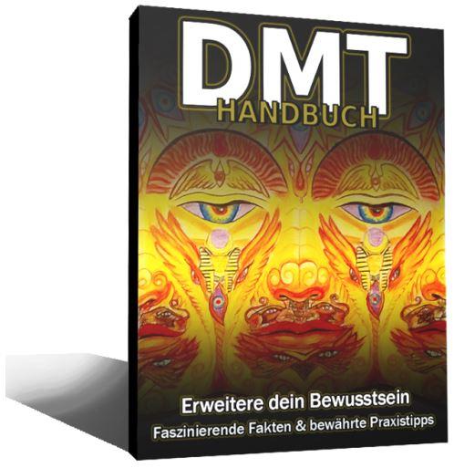 DMT 3D